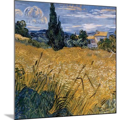 Champ de blé vert avec cypres (Détail)-Vincent van Gogh-Mounted Art Print