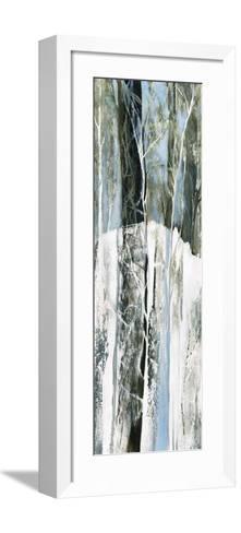 Enter lacs-Kathleen Cloutier-Framed Art Print