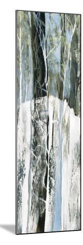 Enter lacs-Kathleen Cloutier-Mounted Art Print