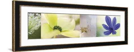 The Garden 4-Florence Delva-Framed Art Print