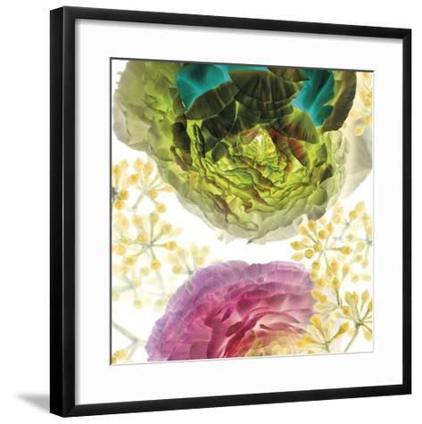 Ranunculus-Kate Blacklock-Framed Art Print