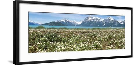 Wild Strawberry Flowers North of Gilbert Bay-Don Paulson-Framed Art Print
