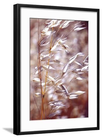 Oats 1-Ken Bremer-Framed Art Print