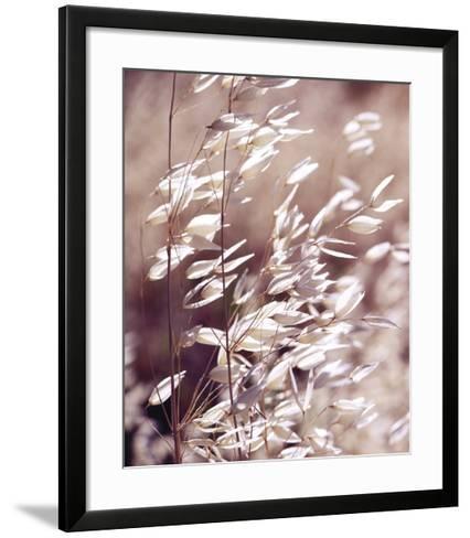 Oats 3-Ken Bremer-Framed Art Print