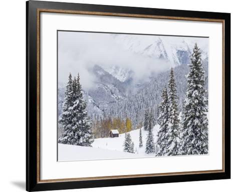 Snowstorm Along Highway 550-Don Paulson-Framed Art Print