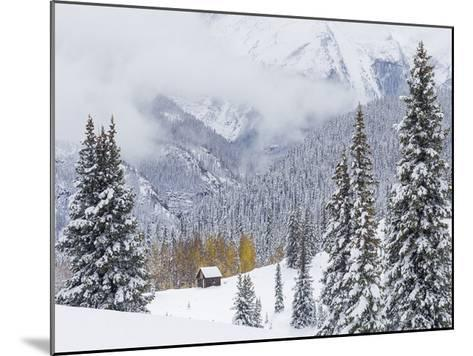 Snowstorm Along Highway 550-Don Paulson-Mounted Giclee Print