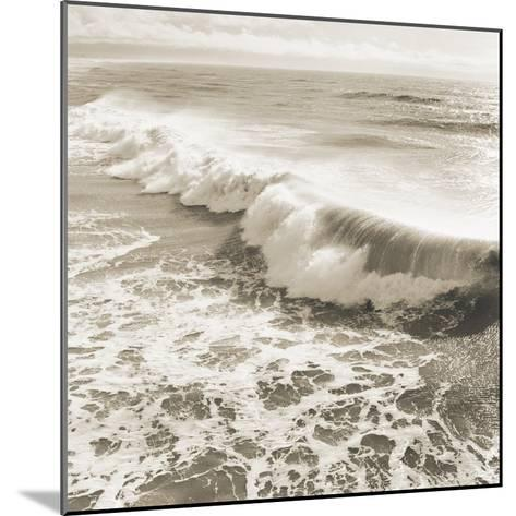 Wave-Michael Kahn-Mounted Giclee Print