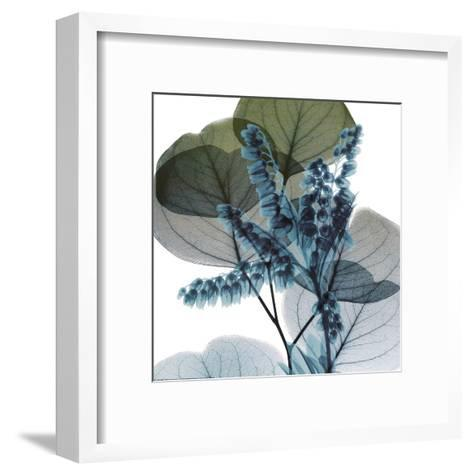 Lilly Of Eucalyptus 2-Albert Koetsier-Framed Art Print