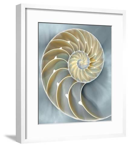 Nautilus in Blue I-Caroline Kelly-Framed Art Print