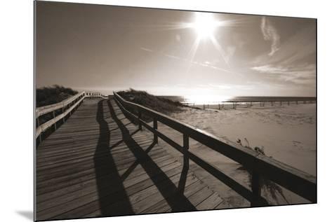 Bronze Beach I-Malcolm Sanders-Mounted Giclee Print
