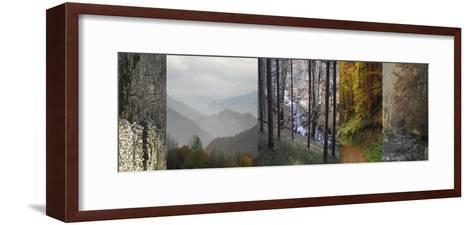 In Awe of Autumn I-Mary Karla-Framed Art Print