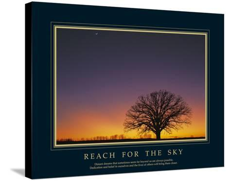 Reach For the Sky-Adam Brock-Stretched Canvas Print