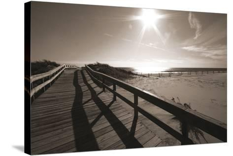 Bronze Beach I-Malcolm Sanders-Stretched Canvas Print
