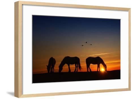 Fly Over-PHBurchett-Framed Art Print
