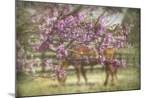 Spring has Sprung-PHBurchett-Mounted Art Print