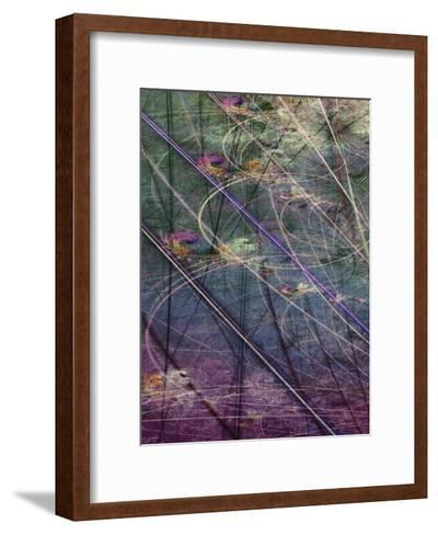 Wetlands Vector I-James Burghardt-Framed Art Print
