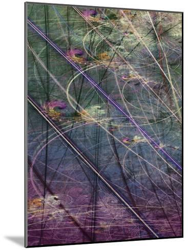Wetlands Vector I-James Burghardt-Mounted Art Print