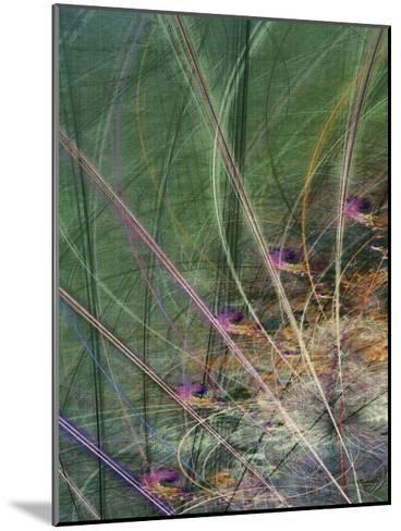 Wetland Vector II-James Burghardt-Mounted Art Print