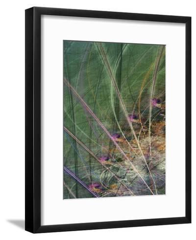 Wetland Vector II-James Burghardt-Framed Art Print