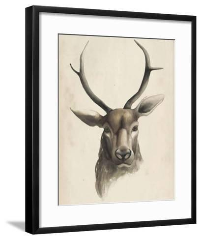 Watercolor Animal Study I-Grace Popp-Framed Art Print