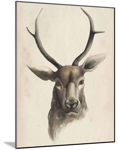 Watercolor Animal Study I-Grace Popp-Mounted Giclee Print