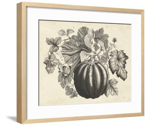 Sepia Squash I-Naomi McCavitt-Framed Art Print