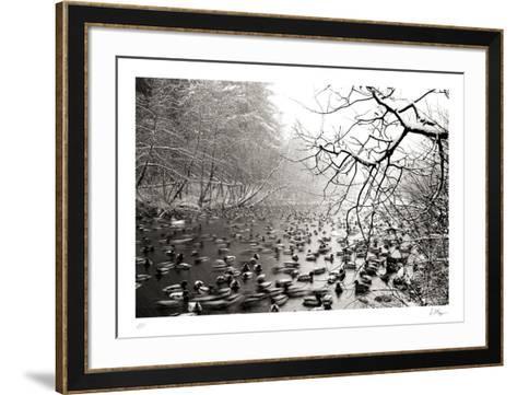 Close Company-Andrew Geiger-Framed Art Print