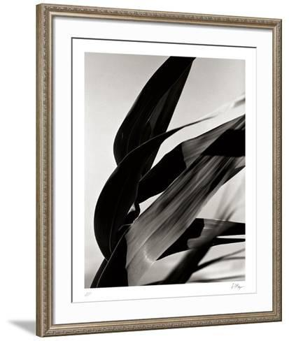 In the Breeze-Andrew Geiger-Framed Art Print