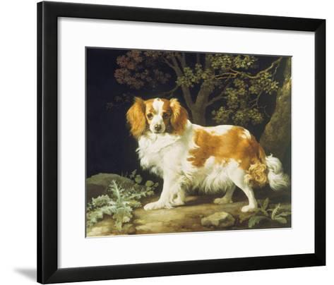 King Charles Spaniel-George Stubbs-Framed Art Print