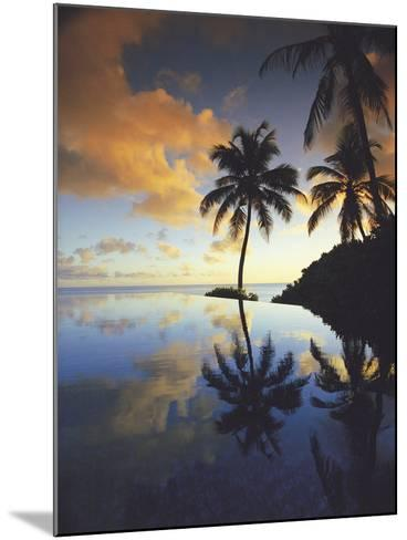 Paradise Dreams II-Chris Simpson-Mounted Giclee Print