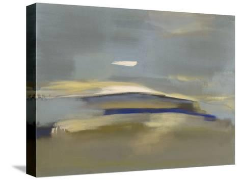 Windswept-Nancy Ortenstone-Stretched Canvas Print