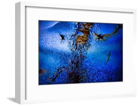 Blue Pathway II-Jean-Fran?ois Dupuis-Framed Art Print