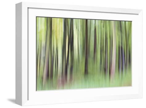 Woodland Whirl-Lee Frost-Framed Art Print
