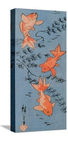 Goldfishes, 1843-Utagawa Hiroshige-Stretched Canvas Print