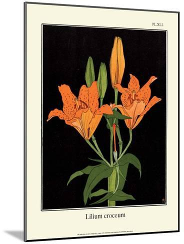 Botanical Print, Orange Lily, 1905-Luite Klaver-Mounted Art Print