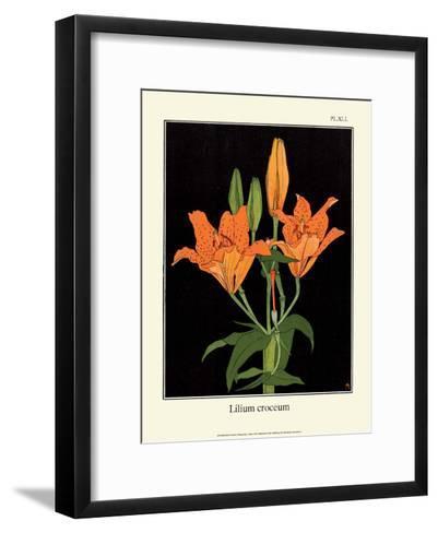 Botanical Print, Orange Lily, 1905-Luite Klaver-Framed Art Print