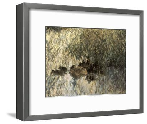 Duck Family, 1903-Bruno Liljefors-Framed Art Print