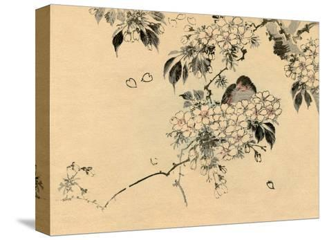 Japanese Bird in Cherry Blossom Nest-Haruna Kinzan-Stretched Canvas Print