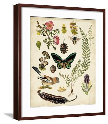 A Walk in the Forest II-Naomi McCavitt-Framed Art Print