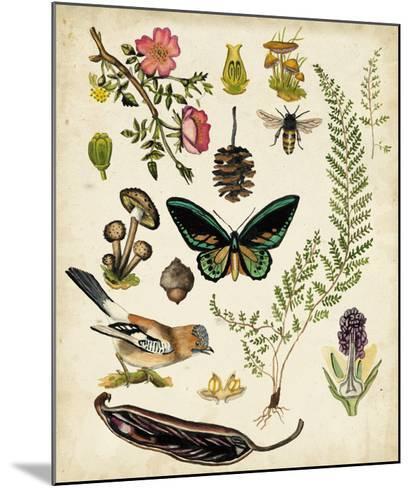 A Walk in the Forest II-Naomi McCavitt-Mounted Giclee Print