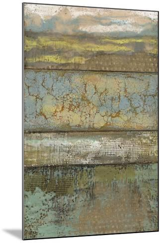 Segmented Textures I-Jennifer Goldberger-Mounted Limited Edition