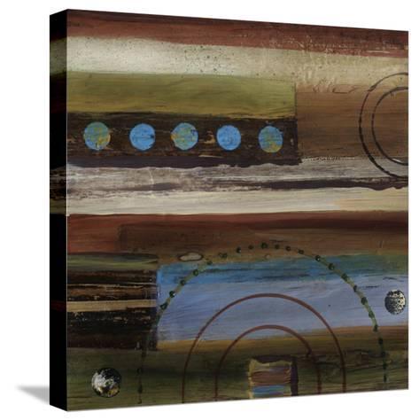 Spice Impressions II-Irena Orlov-Stretched Canvas Print