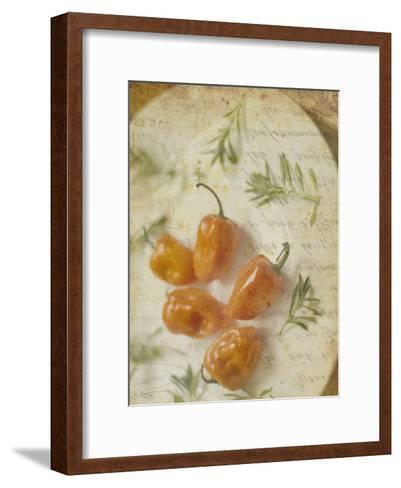 Herb Still Life VI-Irena Orlov-Framed Art Print