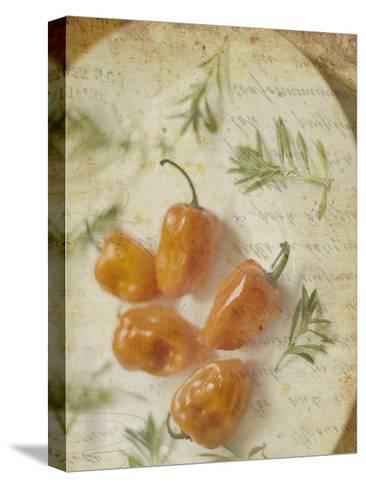 Herb Still Life VI-Irena Orlov-Stretched Canvas Print
