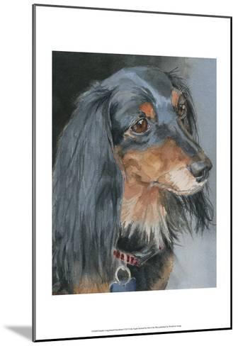 Natalie Long-haired Dachshund-Edie Fagan-Mounted Art Print