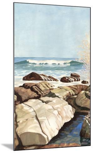 Sea Spray I-Dianne Miller-Mounted Art Print