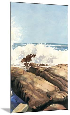 Sea Spray II-Dianne Miller-Mounted Art Print