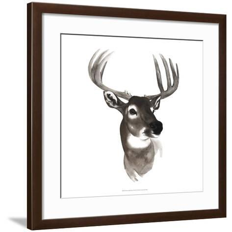 Western Animal Study VI-Grace Popp-Framed Art Print