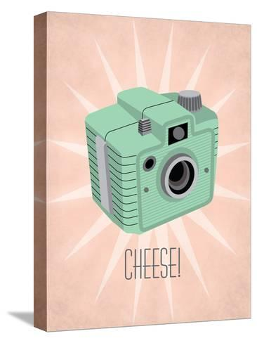 Camera 1-Jilly Jack Designs-Stretched Canvas Print
