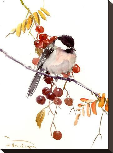 Chickadee-Suren Nersisyan-Stretched Canvas Print